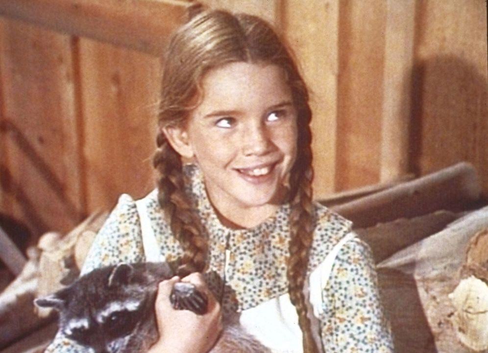 Die kleine Laura (Melissa Gilbert) freundet sich mit einem jungen Waschbären an. - Bildquelle: Worldvision