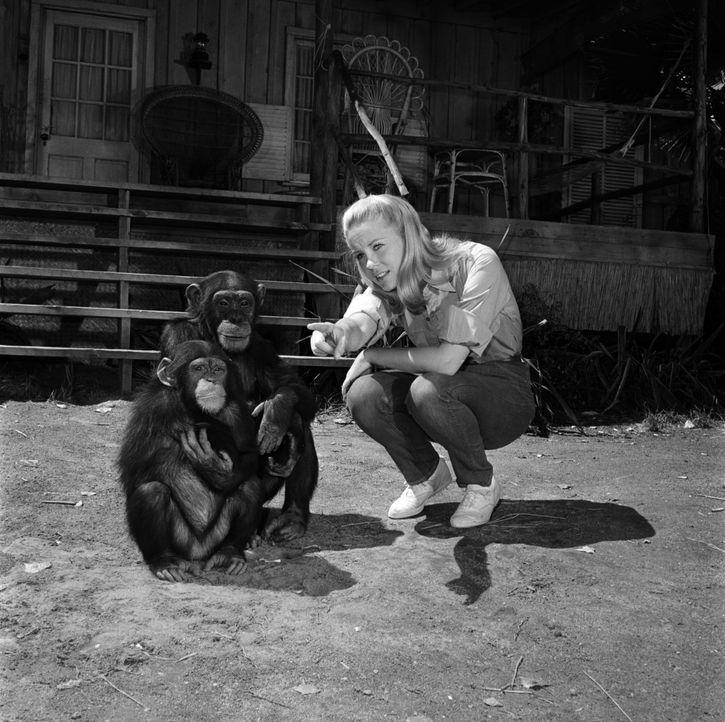 Alle Tiere lieben Paula (Cheryl Miller) ... - Bildquelle: 2007 Warner Brothers