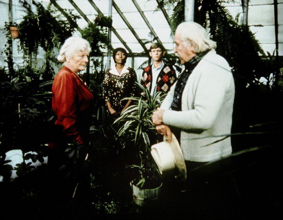 Erst Sam (Will Geer, r.) kann die hartherzige Miss Unwin (Ernestine Barrier, l.) davon überzeugen, Verdie (Lynn Hamilton, 2.v.l.), die von Jason (Jo... - Bildquelle: WARNER BROS. INTERNATIONAL TELEVISION