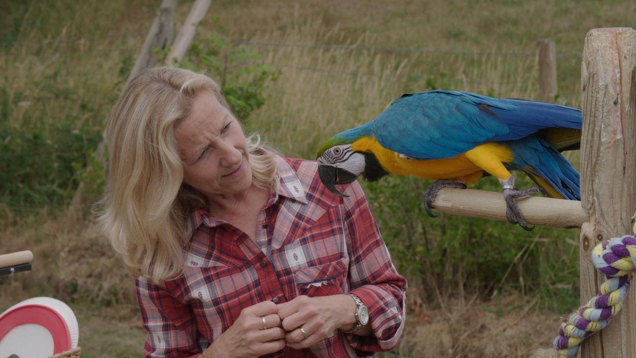 Caroline Clark; Rocco - Bildquelle: ITV Studios Limited 2018    All rights reserved