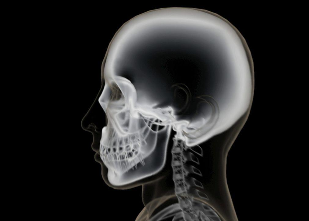 Könnte dieser Schädel dem Vermissten gehören? - Bildquelle: A&E Television Networks