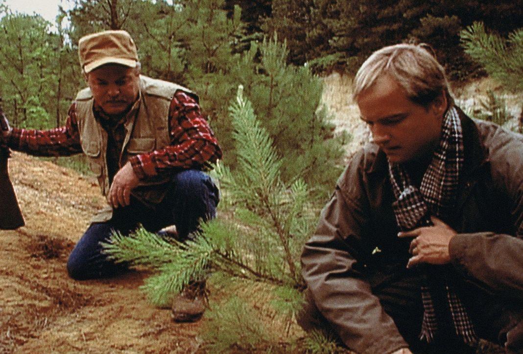 Auf einen barbarischen Serienkiller wird die Polizei erst aufmerksam, als an mehreren Orten mitten in der Wildnis Alaskas plötzlich die Leichen jung... - Bildquelle: Randy Jacobson New Dominion Pictures, LLC