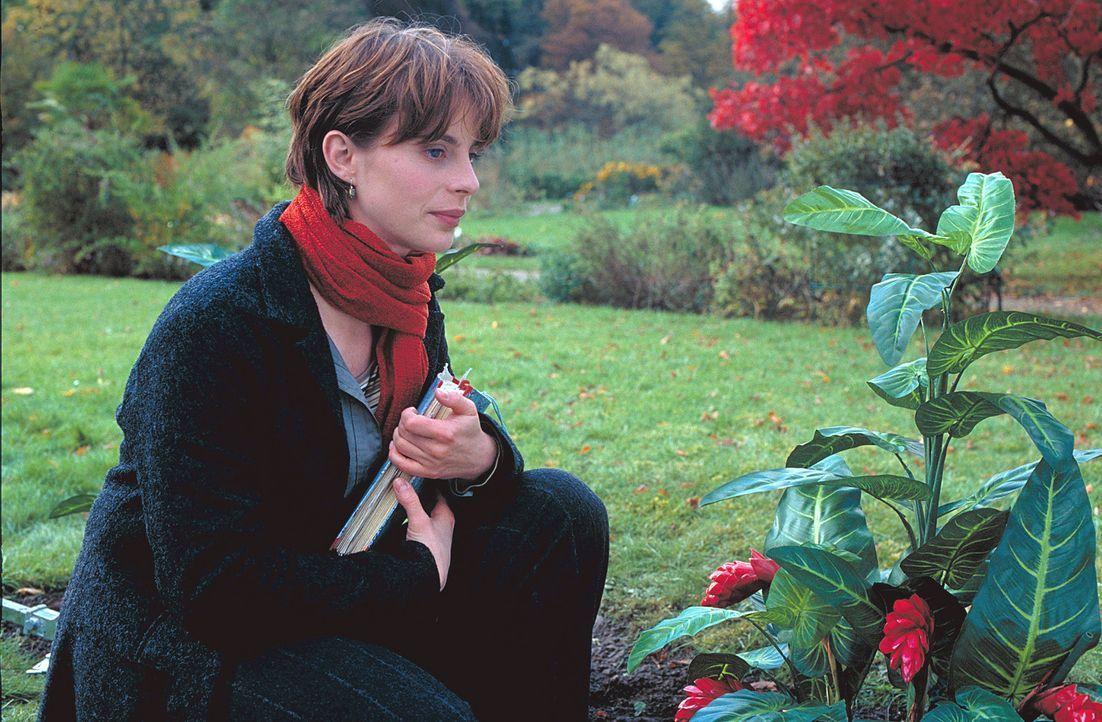Hoffnungslos romantisch: Eine exotische Blume und ein Hochzeitsantrag stürzen Valerie (Julia Jäger) in eine schier aussichtslose Jagd nach einem Unb... - Bildquelle: ProSieben