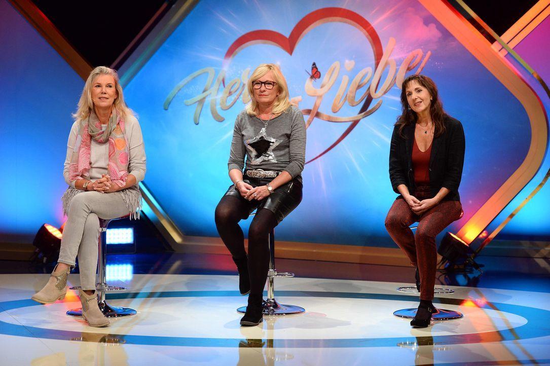 Wer kann überzeugen und ein Herz gewinnen? (v.l.n.r.) Sondra, Monika, Kordula ... - Bildquelle: Willi Weber SAT.1 Gold