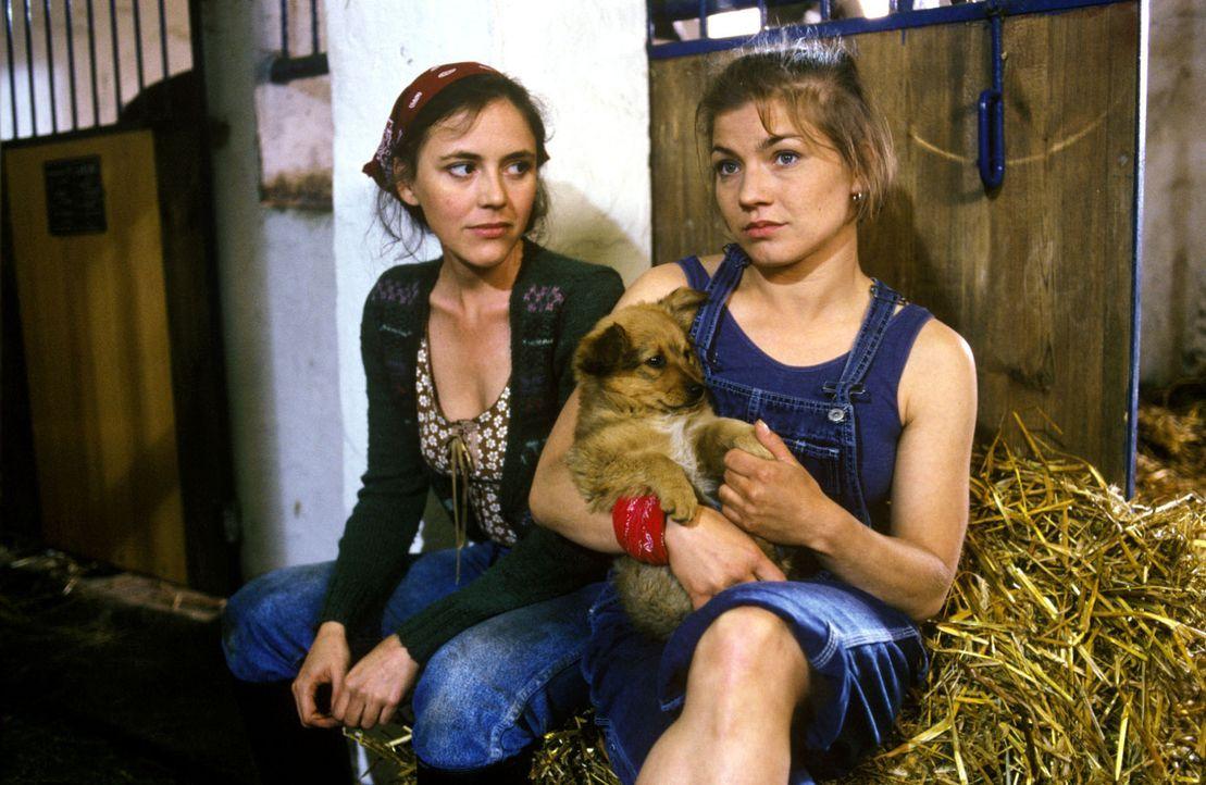 Nach dem Tod von Thommy hat sich Stephanie (Claudia Schmutzler, r.) auf den Öko-Bauernhof ihrer Freundin Oda (Sonja Spengler, l.) zurückgezogen. - Bildquelle: Noreen Flynn Sat.1