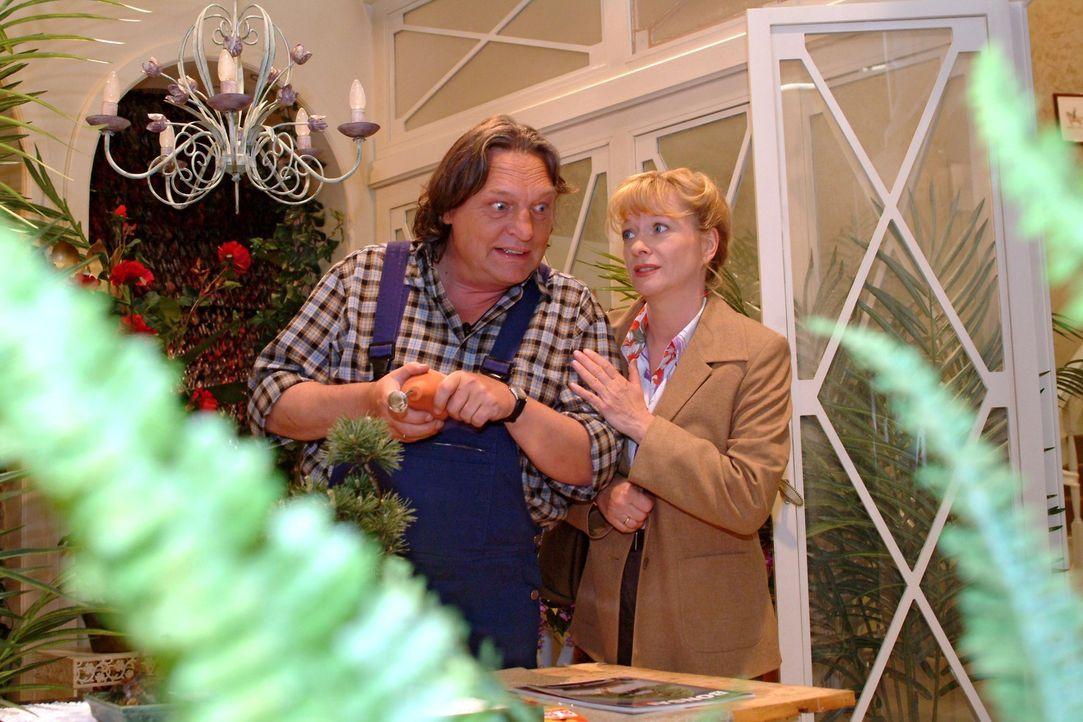 Helga (Ulrike Mai, r.) sucht Bernd (Volker Herold, l.) bei der Arbeit auf und schildert ihm die wahren Motive für Lisas erfundene Verlobung. - Bildquelle: Monika Schürle Sat.1