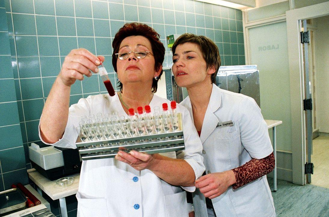 Fieberhaft suchen Klara (Walfriede Schmitt, l.) und Stephanie (Claudia Schmutzer, r.) nach Wertheimers Blutprobe, die ihm während der OP abgenommen... - Bildquelle: Monika Schürle Sat.1