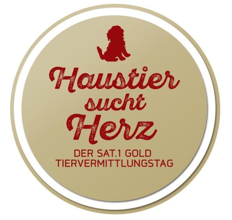 Haustier sucht Herz - Der SAT.1 Gold Tiervermittlungstag - Logo - Bildquelle: SAT.1 Gold