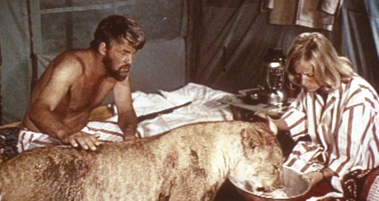 Kümmern sich liebevoll um ihre Löwendame: George Adamson (Bill Travers, l.) und seine Frau Joy (Virginia McKenna, r.) - Bildquelle: 1965, renewed 1993 Columbia Pictures Industries, Inc. All Rights Reserved.