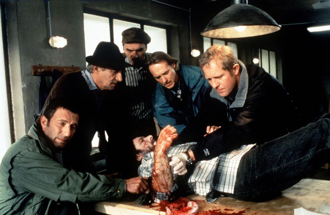 (v.l.n.r.) Dr. Pankraz Obermayr (Walther Reyer); Loisl Holzinger (Elmar Drexel); Paul Reuther (Siemen Rühaak); Dr. Justus Hallstein (Harald Krassnit... - Bildquelle: Beta Film GmbH