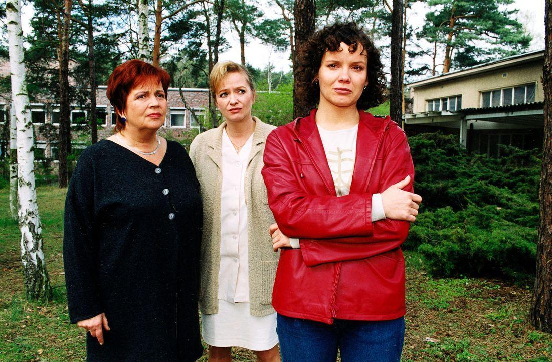 Schwester Klara (Walfriede Schmitt, l.) und Schwester Elke (Ulrike Mai, M.) sind von Stefannys (Julia Hentschel, r.) Entschluss, das Luisenkrankenha... - Bildquelle: Noreen Flynn Sat.1
