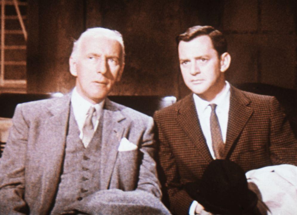 John Wales (Wilfried Hyde-White, l.) und Alexander Coffman (Tony Randall, r.) können nicht glauben, dass sich der Multimillionär Jean-Marc Clement t... - Bildquelle: 20th Century Fox Film Corporation