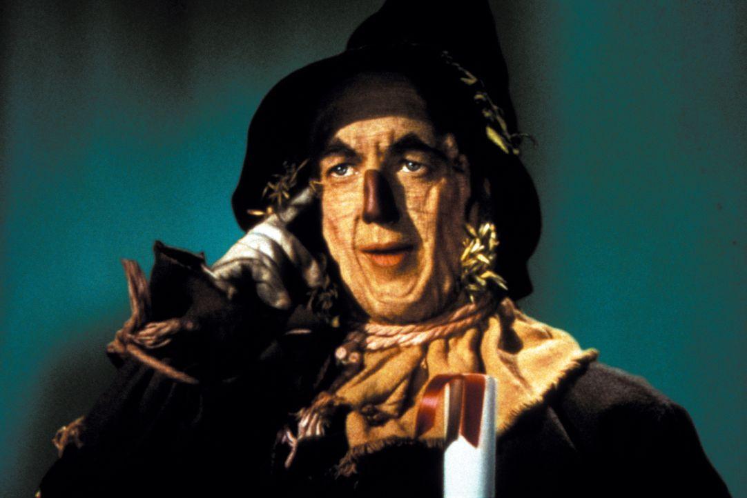 Eines Tages bekommt er, was er immer wollte: Die Vogelscheuche (Ray Bolger) hat statt Stroh nun ein Gehirn im Kopf ... - Bildquelle: Warner Bros.