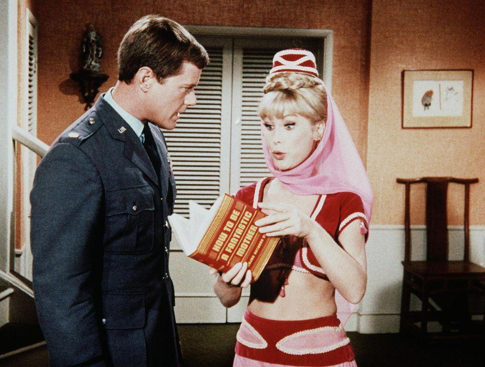 """Jeannie (Barbara Eden, r.) zeigt ihrem Meister Tony (Larry Hagman, l.) ihr Buch """"Wie werde ich eine ideale Mutter"""", das sie nach drei Wochen in ihre... - Bildquelle: Columbia Pictures"""