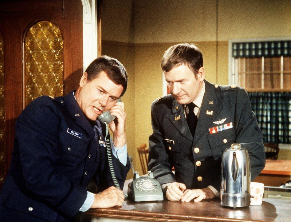 Tony (Larry Hagman, l.) hat Besuch von dem Neffen der Bellows, und ausgerechnet jetzt verschwindet Jeannie spurlos. Selbst Roger (Billy Daily, r.) k... - Bildquelle: Columbia Pictures