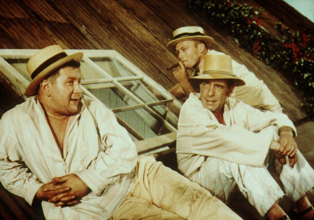 Die drei Gauner Jules (Peter Ustinov, l.), Joseph (Humphrey Bogart, M.) und Albert (Aldo Ray, r.) finden Unterschlupf bei der Kaufmannsfamilie Ducot... - Bildquelle: Paramount Pictures