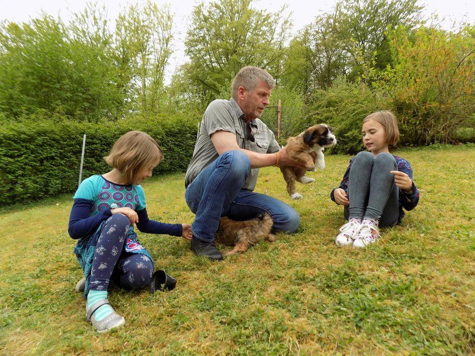 Dirk Lenzen (M.) zeigt Sunny (l.) und Emely (r.), wie man mit Hundewelpen umgeht ... - Bildquelle: SAT.1