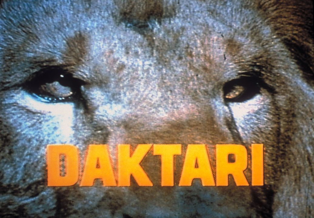 Daktari - Artwork - Bildquelle: 2007 Warner Bros. All Rights Reserved.