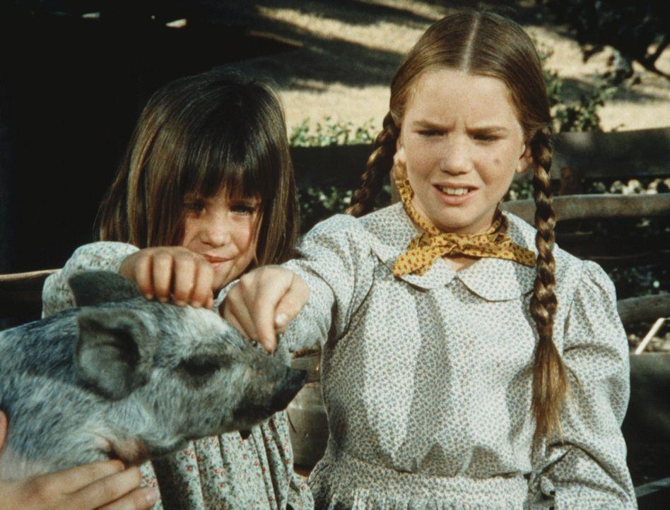 Carrie Ingalls (Lindsay Sidney Greenbush, l.) und ihre Schwester Laura (Melissa Gilbert, r.) bestaunen auf ihrem Ausflug ein Schwein. - Bildquelle: Worldvision