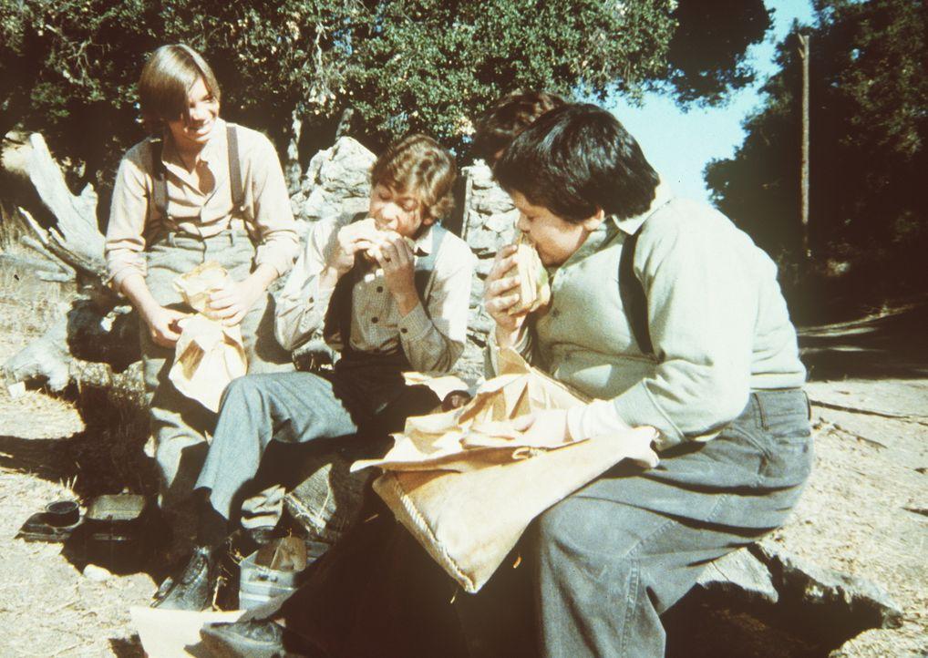 Willie (Jonathan Gilbert, M.) und Elmer (J. Brennan Smith, r.) veranstalten ein Wettessen. - Bildquelle: Worldvision