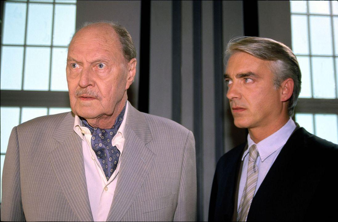 Felix (Christoph M. Ohrt, r.) wird von seinem Vater mit der Vertretung seines Freundes Friedrich Liesgau (Ivan Desny, l.) beauftragt. Der berühmte... - Bildquelle: Hardy Spitz Sat.1