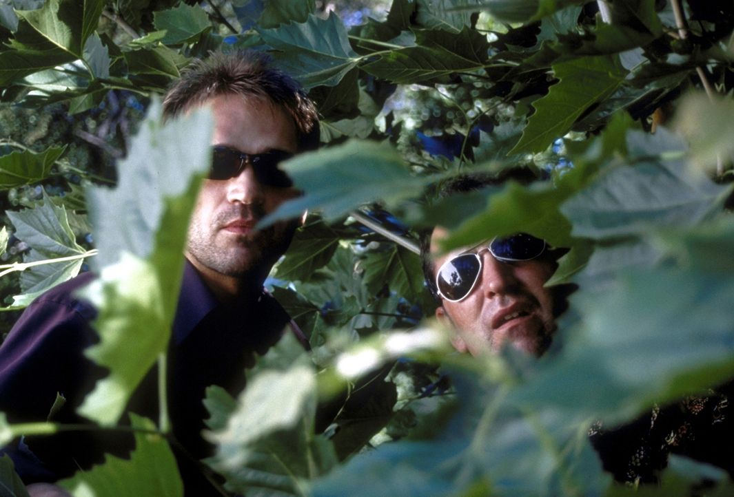 Seit Michael und Oliver Tag für Tag eine neue Eroberung präsentieren können, gerät Leo (Matthias Herrmann, l.) unter Druck. Er versucht, die Zwei un... - Bildquelle: David Bloomer ProSieben
