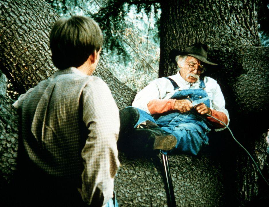 Jason (Jon Walmsley, l.) entdeckt Boone (Morgan Woodward, r.) im Wald, der sich dort versteckt hat, um heimlich Whiskey zu brennen ... - Bildquelle: WARNER BROS. INTERNATIONAL TELEVISION