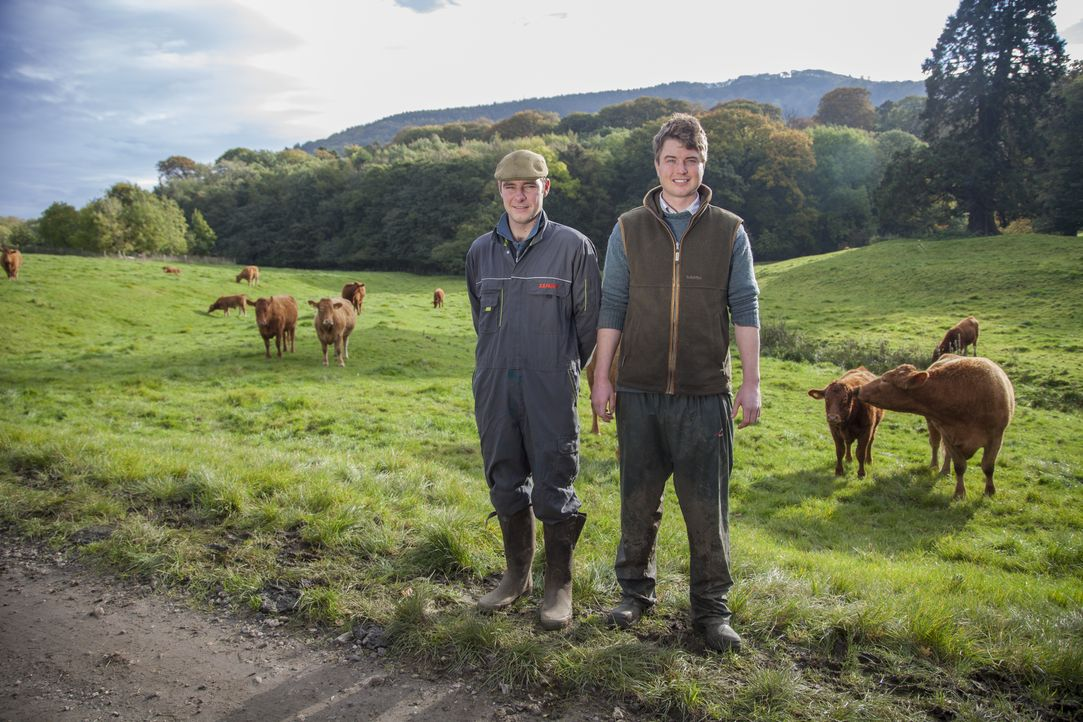 Julian wird zu einem Notfall gerufen: Eine Kuh hat Schaum vor dem Mund und d... - Bildquelle: Daisybeck Studios
