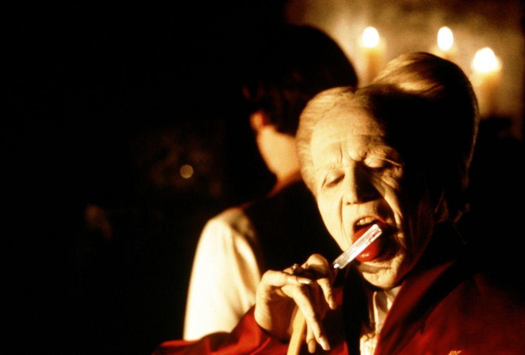Nachdem Graf Dracula (Gary Oldman) von der hübschen Mina erfährt, macht er sich sofort auf den Weg nach London ... - Bildquelle: Columbia Pictures