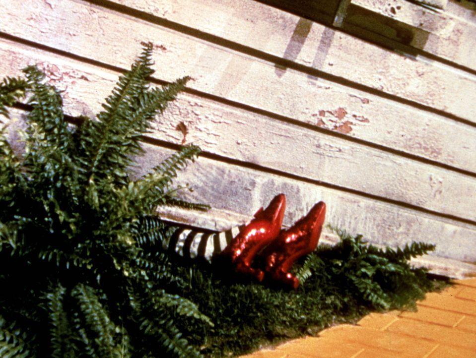Dorothy ist nach ihrer stürmischen Ankunft in Oz auf der bösen Hexe des Ostens gelandet, die den Aufprall nicht überlebt ... - Bildquelle: Warner Bros.
