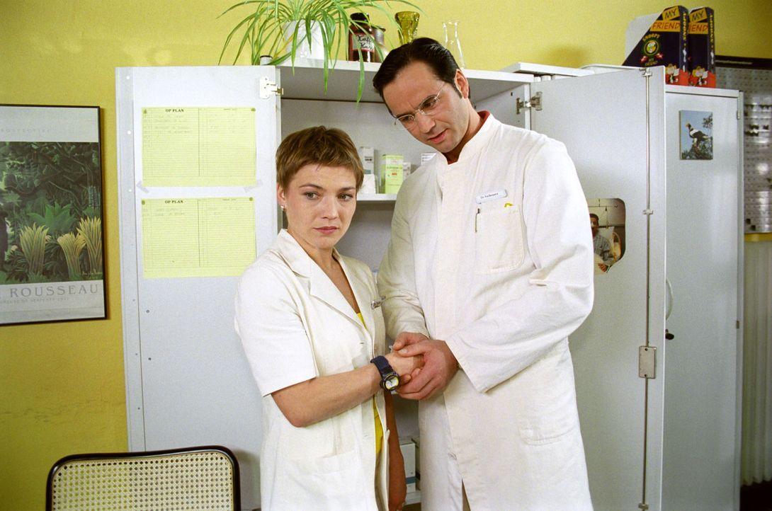 Stephanie (Claudia Schmutzler, l.) ist über die plötzliche Annäherung des Kinderarztes Valàsquez (Christian Leonard, r.) überrascht. - Bildquelle: Noreen Flynn Sat.1