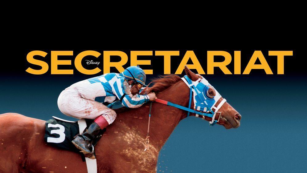 Secretariat - Ein Pferd wird zur Legende - Bildquelle: John Bramley Disney Enterprises, Inc.  All rights reserved / John Bramley