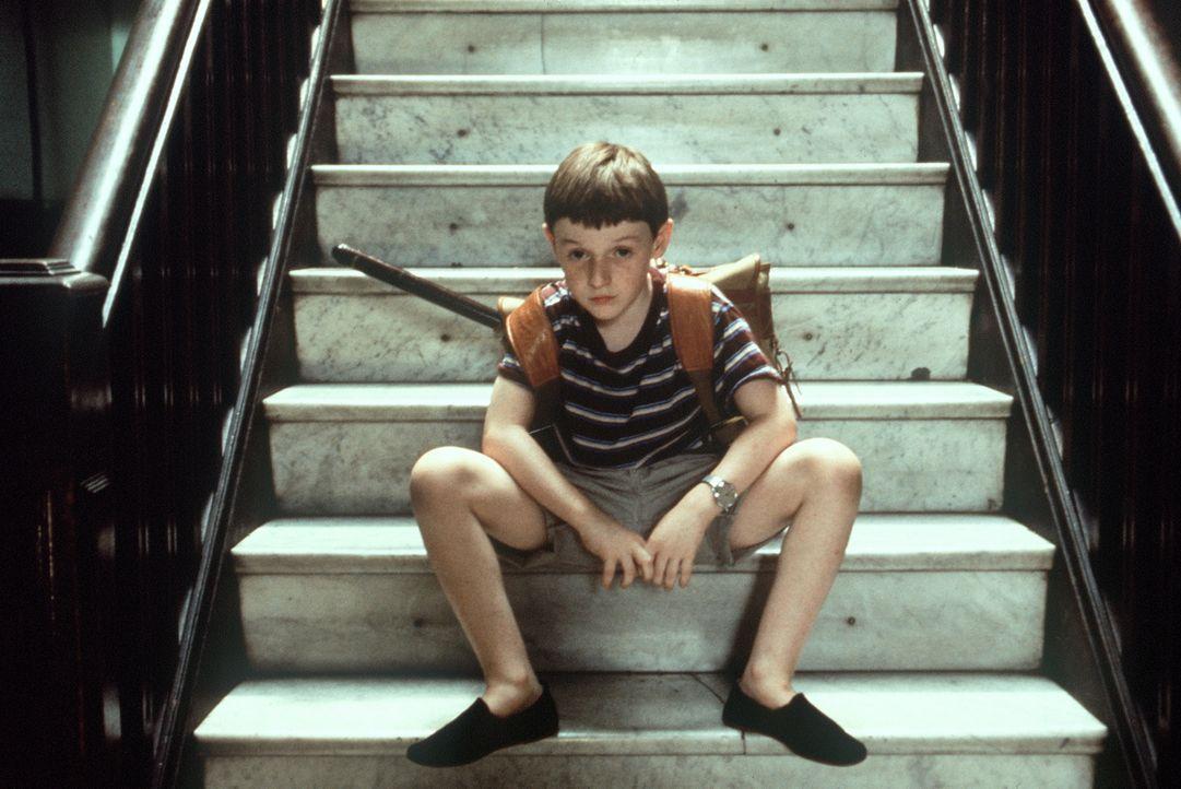 Der hochbegabte Fred (Adam Hann-Byrd) ist in der Schule ein Außenseiter ... - Bildquelle: Orion Pictures Corporation