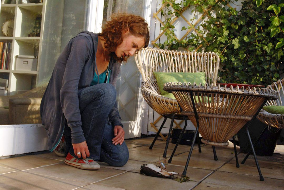 Saras (Marie Rönnebeck) Leben ändert sich schlagartig, als ein kleiner Vogel mit einem Brief am Fuß gegen ihre Fensterscheibe fliegt ... - Bildquelle: Hardy Spitz Sat.1