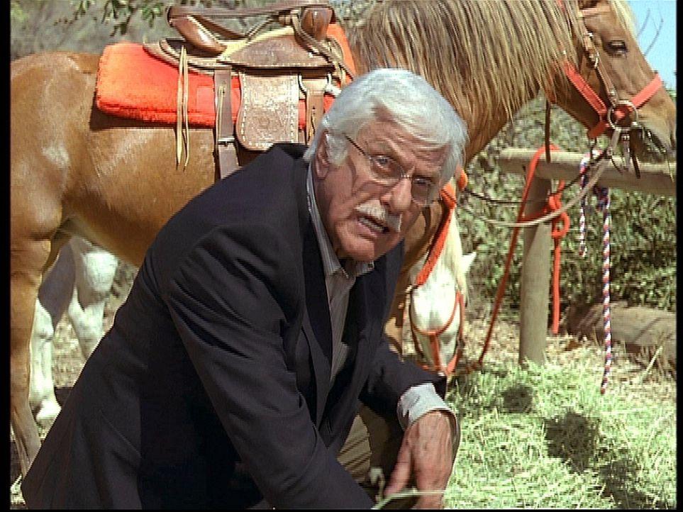 Entsetzt kniet Mark (Dick Van Dyke) neben der Leiche seines alten Freundes Chester, der ermordet wurde ... - Bildquelle: Viacom