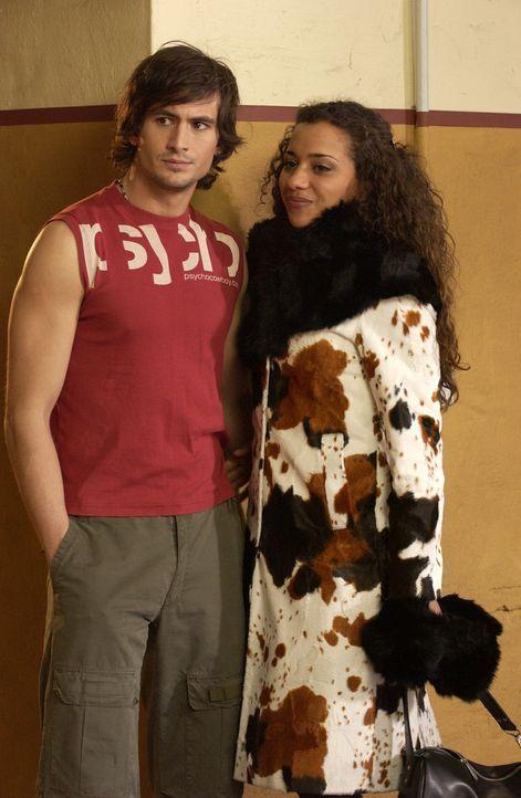 Als Tim (Tom Beck, l.) die liebenswerte Chris kennen lernt, erkennt er, dass er seine Kollegin Lara (Nadja Benaissa, r.) nicht mehr liebt und trennt... - Bildquelle: Rainer Bajo ProSieben