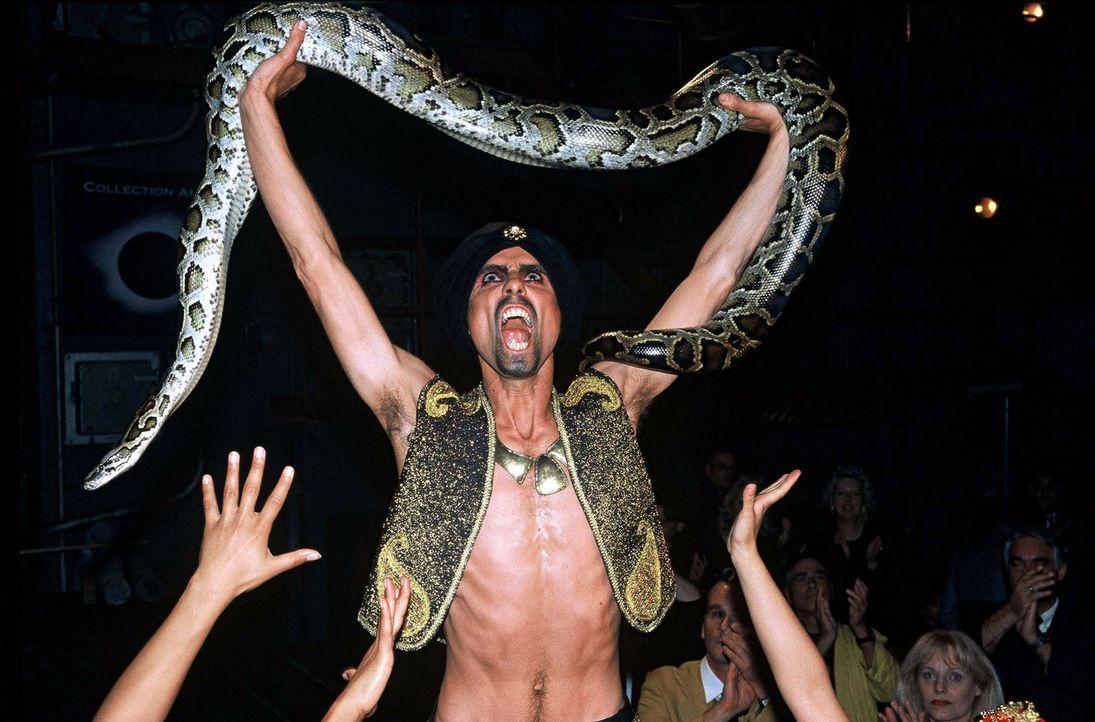 Hanuman (Jan Schütte) begeistert mit seiner Schlangennummer das Publikum. - Bildquelle: Munstermann Sat.1