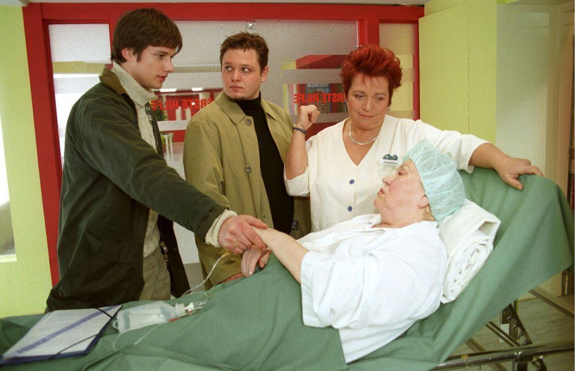 Linda Hamsters (Eva-Maria Bauer, liegend) Enkelsöhne Ole (Stefan Schuster, 2.v.l.) und Ulf (Kristian-Erik Kiehling, l.) lieben beide ihre Oma - anso... - Bildquelle: Noreen Flynn Sat.1