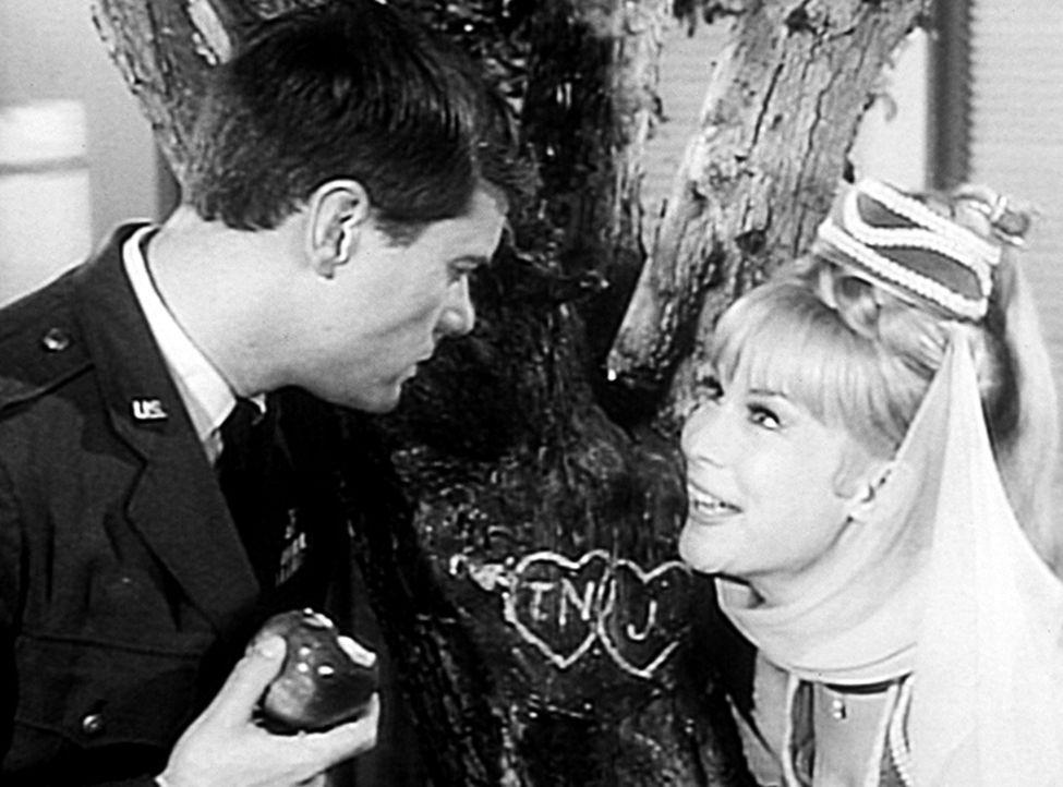 Tony (Larry Hagman, l.) erzählt Jeannie (Barbara Eden, r.) ein Kindheitserlebnis, wie ein Zauberer aus einem Kern einen ganzen Apfelbaum werden ließ... - Bildquelle: Columbia Pictures