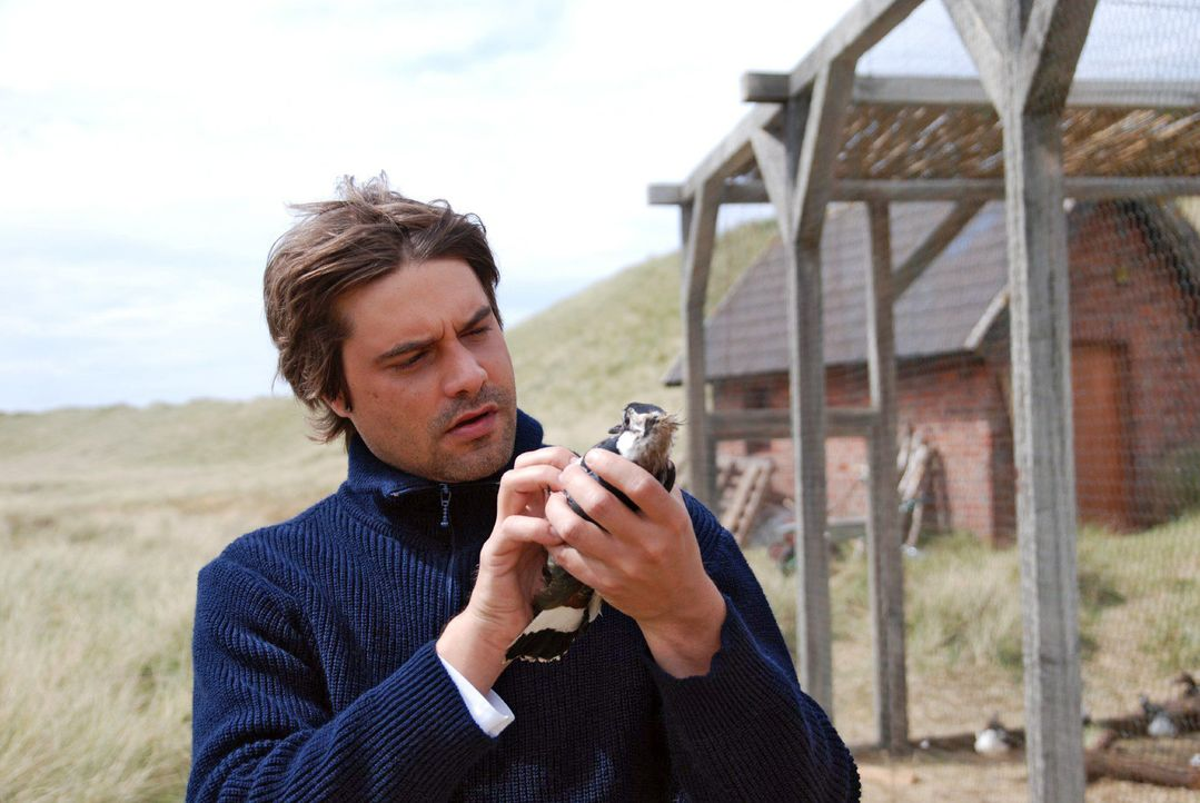Georg (Raphaël Vogt) versucht den Tod seiner Freundin damit zu verarbeiten, in dem er ihr Briefe schreibt und sie mit einem Vogel verschickt. - Bildquelle: Hardy Spitz Sat.1