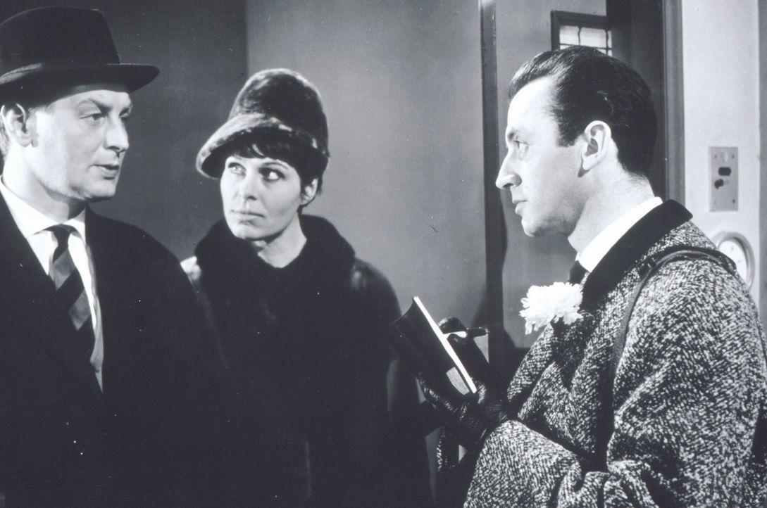 Beryl (Barbara Rütting, M.) und Josua Harras (Eddi Arent, r.) nehmen Frank Sutton (Günter Pfitzmann, l.), den Besitzer einer Tiergroßhandlung etwas... - Bildquelle: Constantin Film