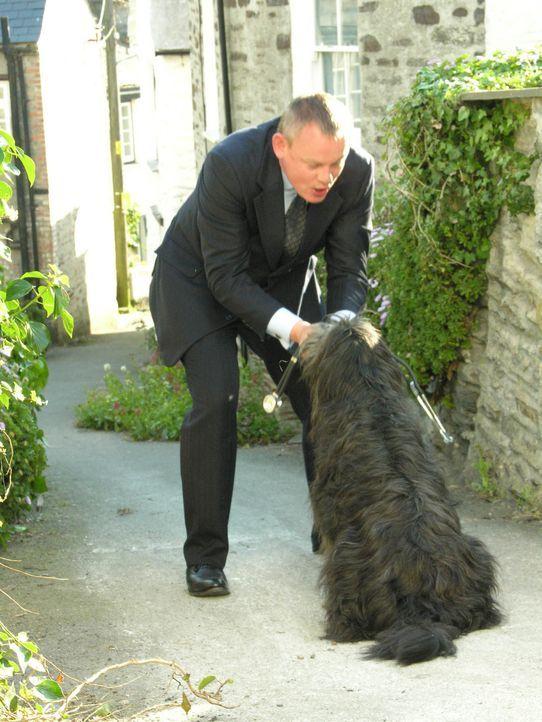 Alt, aber oho: Kann Doc Martin (Martin Clunes) den Hund beruhigen? - Bildquelle: BUFFALO PICTURES/ITV
