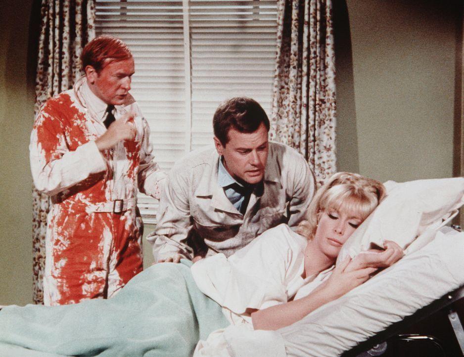 Tony (Larry Hagman, M.) und Roger (Bill Daily, l.) gelingt es als Malergesellen getarnt, Jeannie (Barbara Eden, r.) im NASA-Hospital zu besuchen. - Bildquelle: Columbia Pictures