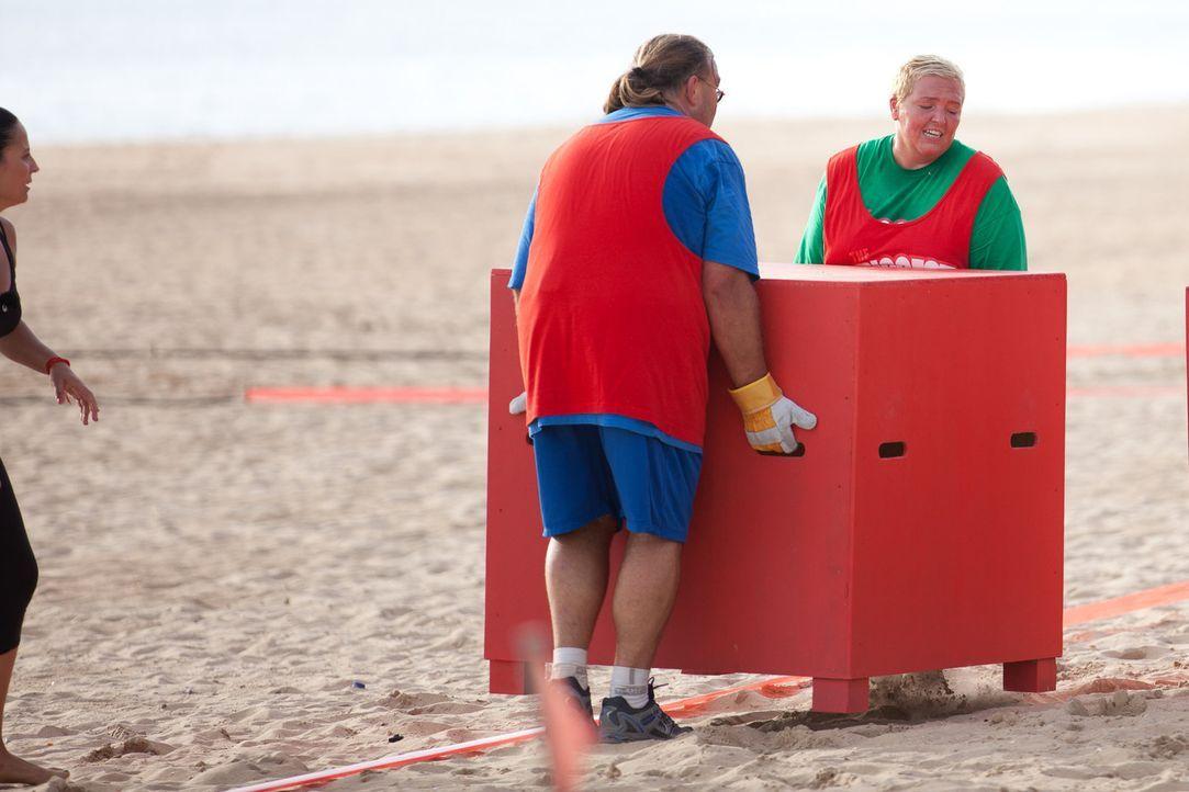 Unter der Regie von Silke (l.) müssen Ralf (M.) und Sandy (r.) Kisten über den Strand schleppen - eine Tortur ... - Bildquelle: Enrique Cano SAT.1