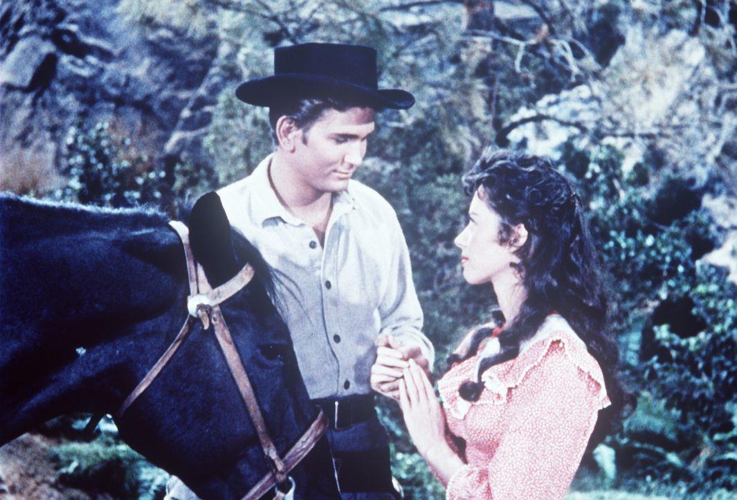 Little Joe (Michael Landon, l.) und die junge Amy Bishop (Adrienne Hayes) haben sich ineinander verliebt, obwohl ihre Väter Todfeinde sind. - Bildquelle: Paramount Pictures