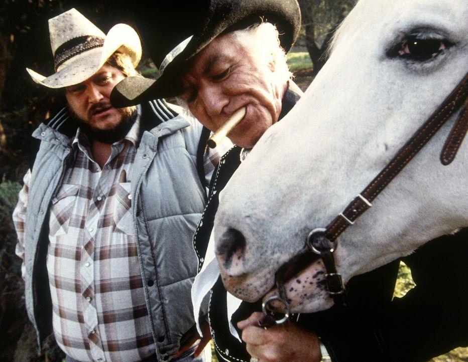 Der Ölmilliardär Bo Johnson (Morgan Woodward, r.) will der Prinzessin ein wertvolles Pferd schenken, ein tödliches Geschenk ... - Bildquelle: CBS Television