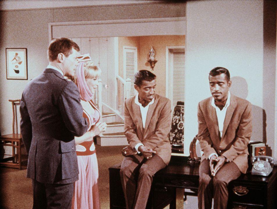 Um Tony (Larry Hagman, l.) zu helfen, hat Jeannie (Barbara Eden, 2.v.l.) nicht nur Sammy Davis jr. (Sammy Davis jr.) herbeigezaubert, sondern ihn au... - Bildquelle: Columbia Pictures