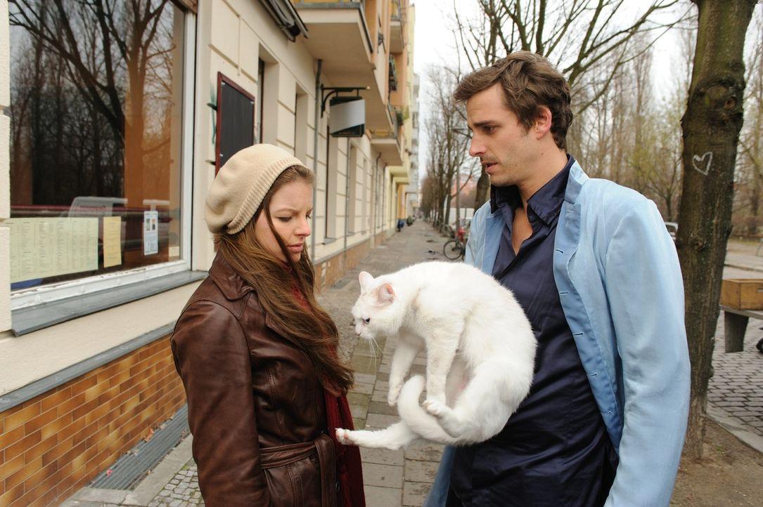 Um Laura (Yvonne Catterfeld, l.) eine Freude zu machen, organisiert Erzengel Uriel (Max von Thun, r.) eine neue Katze für sie - und verliert sein He... - Bildquelle: Hardy Spitz SAT.1