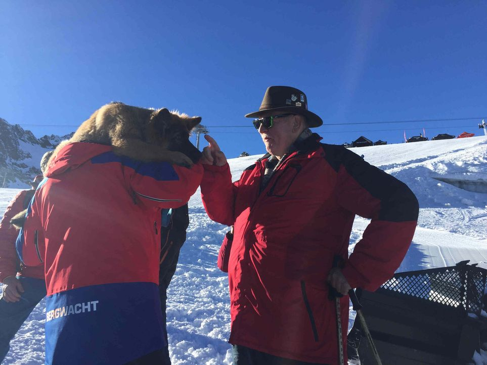 Auf dem Hintertuxer Gletscher macht Tamme Hanken Bekanntschaft mit fünf Hunden ... - Bildquelle: kabel eins