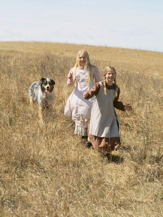 Verlieren niemals ihre Lebensfreude: Laura (Kyle Chavarria, r.) und Mary (Danielle Chuchran, l.) ... - Bildquelle: ABC, Inc.